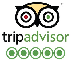 trip-advisor-logo-5-star
